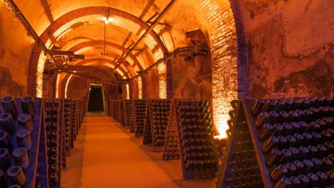 Traditional Champagne Tours