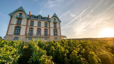 Luxury Champagne Tours